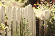 Anne of Green Gables Aesthetic/ Secret Garden Beau Film, Anne Auf Green Gables, White Picket Fence, Picket Fences, Picket Gate, White Fence, Into The Fire, Cozy Cottage, Garden Gates