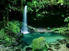 High resolution nature desktop wallpaper of Emerald Pool Morne Trois Pitons National Park Dominica West Indies (ID: Oh The Places You'll Go, Places To Travel, Places To Visit, Parc National, National Parks, Dream Vacations, Vacation Spots, Tropical Vacations, Family Vacations