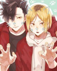 Kuroo Tetsurou x Kozume Kenma / Haikyuu! Manga Haikyuu, Haikyuu Funny, Haikyuu Fanart, Haikyuu Ships, Film Anime, Comic Anime, Me Anime, Cute Anime Guys, Kuroo X Kenma