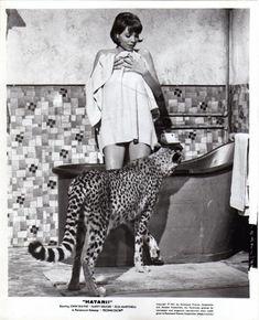 Elsa Martinelli takes a bath in Hatari (1962)