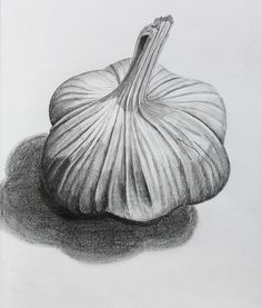 One of the popular drawings is Observational Drawing ideas. The phrase 'observational drawing' normally means drawing from life. Pencil Art Drawings, Art Sketches, Charcoal Drawings, Basic Drawing, Drawing Ideas, Food Drawing, Vegetable Drawing, Fruits Drawing, Observational Drawing