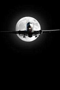 Night Flight - entert he world of the Noctornal