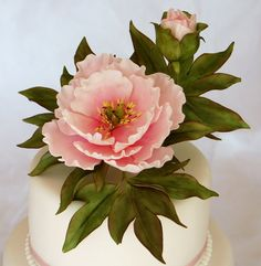 Pink Peony - by Cariadscakes @ CakesDecor.com - cake decorating website