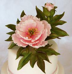 Pink Peony - by Cariadscakes @ CakesDecor.com - cake decorating website