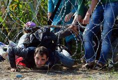 migrants syriens - Recherche Google