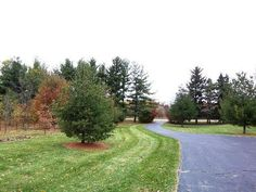 MLS # 07933999 - 8509 Crystal Springs Road, Woodstock IL, 60098 | Homes.com