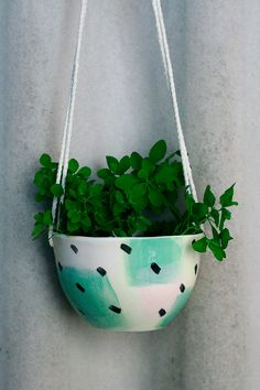 hanging planters round up