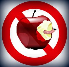 SLP Android Apps in the Amazon Appstore | Speech Therapists Dont Get Apples!