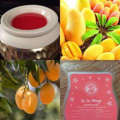 #GoGoMango - subtle, fruity and delicious https://scentrestage.scentsy.com.au