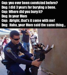 ideas for funny animals with captions humor hilarious so cute Funny Cute, The Funny, Hilarious, Crazy Funny, Cops Humor, Cop Jokes, Police Jokes, Military Jokes, Thing 1