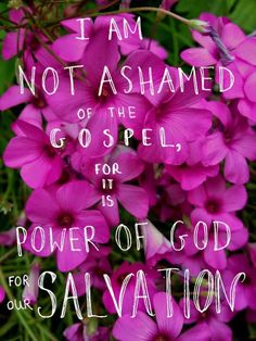 Romans 1:16 - For I am not ashamed of the gospel of Christ: for it is the power of God unto salvation to every one that believeth; to the Jew first, and also to the Greek.