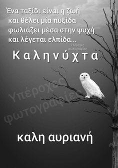Good Night, Good Morning, Tatoos, Flowers, Animals, Greek, Inspiring Sayings, Nighty Night, Buen Dia