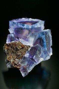 Fluorite sur Sphalérite Minerva No.1 Mine, Cave-in-Rock, Hardin County, Illinois, USA Taille=5.8 x 4.5 x 3.6 cm Ex. Martin Zinn coll.