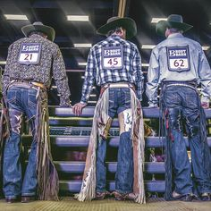 You can't beat the view from behind the chutes. Rodeo Cowboys, Hot Cowboys, Real Cowboys, Cute Country Boys, Country Men, Barn Boots, Historical Women, Historical Quotes, Cowboys And Angels