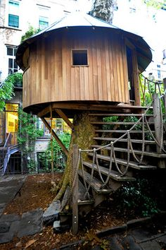 Another lovely tree house