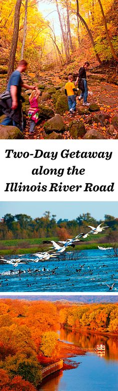 The journey along the Illinois River Road appeals to birders, hikers and wine-lovers, with attractions such as Starved Rock State Park:  http://www.midwestliving.com/travel/illinois/two-day-getaway-along-the-illinois-river-road/ #illinois #nature #vacation