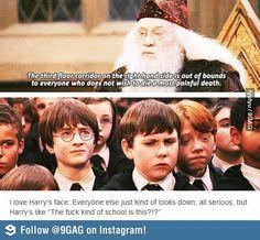Dumbledore advice