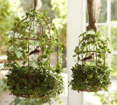Image from http://1.bp.blogspot.com/-QpyGBfca3es/T0S3W9GtoQI/AAAAAAAAIS8/39xk2EMBAA0/s1600/bird-cage-burlap-garden-patio-sun-room-decoration-hanging-greens-flower-summer-spring-wedding-sweet-decoration-craft-picnic-idea-easy-diy-shabby-chic-makeover-upcycle.jpg.