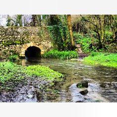 Stone bridge over the river at Cerne Abbas, Dorset
