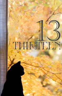 Countdown to Halloween and celebrate black cats! Today we start at lucky number… Day Countdown, Halloween Countdown, Lucky Number 13, Lucky Day, Friday The 13th, Fall Signs, Lucky Charm, Book Of Shadows, Cat Love