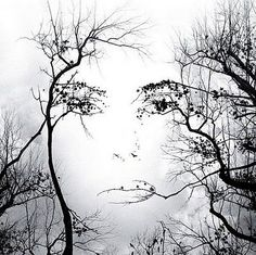 trees and face