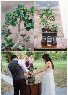 Planting together, shall we? :)