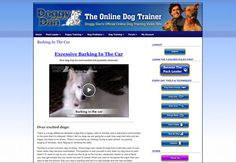 FREE 3 Day Trial Access to over 200 dog training videos - The Online Dog Trainer - Doggy Dan Website Puppy Training Schedule, Dog Training Courses, Dog Training Videos, Best Dog Training, Dog Separation Anxiety, Dog Anxiety, Anxiety Tips, You Come And Go, Potty Trainer