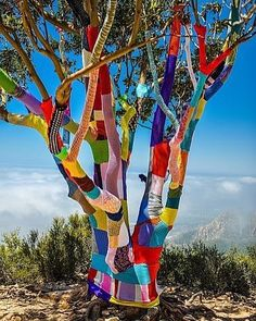 This incredible #yarnbomb by @yarnbombs in East Camino Cielo California!  What a work of art by a total legend! image found on #Pinterest by deartomyartcreations