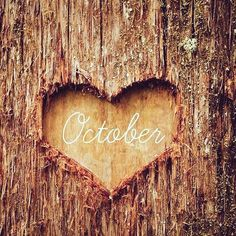 We have so much to do together Mr October let's do this! #October2015 #Autumn #1stdayofthemonth