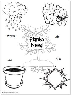 Use a graphic like this to guide a scientific inquiry: do plants really need all of these things? Have a control plant and then deprive plants of each of these to see whether these are needs and discuss why. CJ