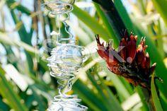 Kiwiana Christmas, Flax with Christmas Decorations royalty-free stock photo