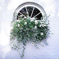 Window Container pic2