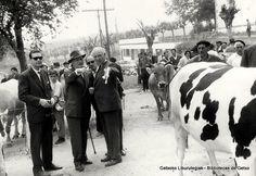 Concurso de ganado vacuno en Andra Mari, 15 de mayo de 1961 (Colección Archivo municipal) (ref. 00614)