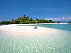 The Island Buenavista is an exclusive island resort in Samal, Davao, Philippines, thriving with lush tropical vegetation and numerous palm trees. Philippines Beaches, Philippines Travel, Lanai Island, Island Beach, Tonga, Honey Moon, Fiji Travel, Beach Travel, Viajes