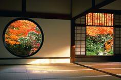 秋の源光庵(京都) いたるところに禅の教えが散りばめられた京都有数の美しい庭を誇る寺。本堂には「迷いの窓」と呼ばれる四角い窓と「悟りの窓」と呼ばれる丸い窓が並んでいる。また、「伏見城の戦い」で、鳥居元忠一派が討死した痕跡が残る床板が、供養のため天井におさめられている。