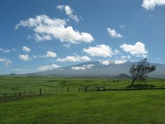 Parker Ranch 130,000 acres, Big Island