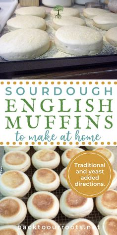 sourdough bread English Muffins are a permanent part of breakfast around here. You can eat them simple with just cream cheese, or fancy as Eggs Benedict. But either way, sourdough is the way to go! Come join me as I walk you through the process. Sourdough English Muffins, Sourdough Biscuits, Homemade English Muffins, Yeast Bread, Sourdough Bread Machine, Sourdough Cinnamon Rolls, Gluten Free Sourdough Bread, Egg Biscuits, Sourdough Bread Starter