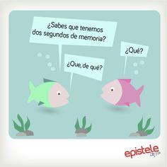 #Humor #Verano #Epistele