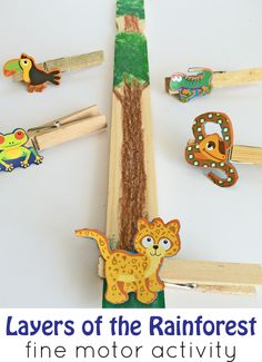 Fine Motor Activity Layers of the rainforest preschool fine motor activity. Perfect to go along with the book The Greak Kapok Tree!Layers of the rainforest preschool fine motor activity. Perfect to go along with the book The Greak Kapok Tree! Rainforest Preschool, Rainforest Crafts, Rainforest Project, Preschool Jungle, Jungle Crafts, Rainforest Habitat, Rainforest Theme, Rainforest Animals, Preschool Themes