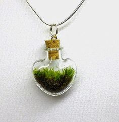 Carry a bit of nature wherever you go with a Heart-shaped Terrarium Vial Necklace!