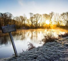 Guten Morgen!! #jenaparadies #sunrise #saale #frost #canon