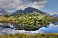 Escape via a road trip through the fairy tale landscapes of Connemara, Ireland Connemara Ireland, Low Maintenance Landscaping, Ireland Landscape, Landscaping Company, Ireland Travel, British Isles, Places Ive Been, Beautiful Places, Amazing Places