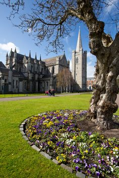 Catedral de St. Patrick, Dublin, Ireland.  Go to www.YourTravelVideos.com or just click on photo for home videos and much more on sites like this.