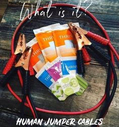 What's Thrive?