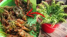 Amazing coriander leaves chop making beside the village road. Dhone Patar chop making. The video shows how to Coriander recipe. Coriander leaves fried chop r. Coriander Leaves, Street Food, Food Videos, Carrots, Fries, Vegetables, Watch, Youtube, Carrot