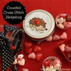 Cross Stitch up some hedgehog fun with #dimenstions #chanetworking @favecrafts