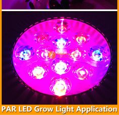 Product Abstract: LED plant lamp, PAR38 15W, red12:blue3 or red13:blue2, E27 socket, to promote plant's growing, internal power supply 85-265VAC, CE,RoHS. - See more at: http://www.febten.com/15W-LED-Grow-Light-PAR38.html#sthash.zcNcLRYn.dpuf