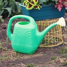 Bloem Aqua Rite 2 Gallon Watering Can Colour: Calypso Cedar Planter Box, Plastic Planter Boxes, Window Planter Boxes, Corten Steel Planters, Wood Planters, Planter Pots, Cedar Raised Garden Beds, Cedar Garden, Hanging Glass Planters