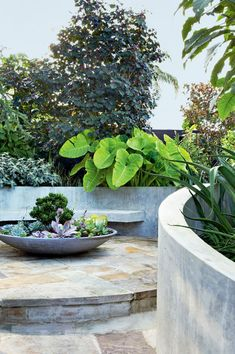 20 best urban garden designs Make the most of your outdoor space! Check out this collection of urban Steep Gardens, Back Gardens, Small Gardens, Outdoor Gardens, City Gardens, Garden Design Images, Urban Garden Design, Patio Design, Garden Spaces