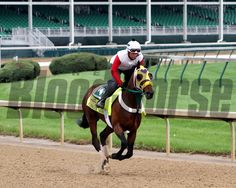 Uncle Sigh on the track at Churchill Downs on April 29, 2014. Photo By: Chad B. Harmon